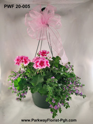 Hanging Basket from Parkway Florist in Pittsburgh PA