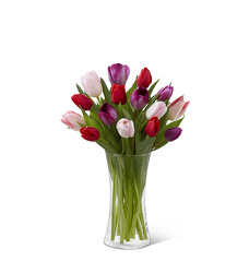 The FTD Tender Tulips Bouquet from Parkway Florist in Pittsburg PA