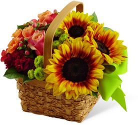 The Bright Day Basket from Parkway Florist in Pittsburgh PA