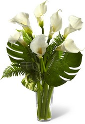 The FTD Always Adored Calla Lily Bouquet from Parkway Florist in Pittsburg PA