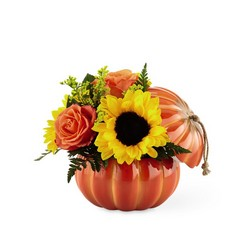 The  Harvest Traditions Pumpkin from Parkway Florist in Pittsburgh PA