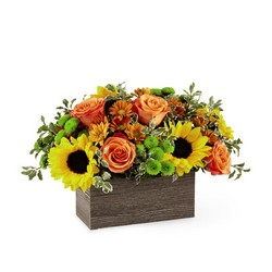 The Happy Harvest Garden from Parkway Florist in Pittsburgh PA