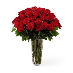 The FTD Long Stem Red Rose Bouquet from Parkway Florist in Pittsburgh PA