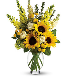 Here Comes The Sun from Parkway Florist in Pittsburgh PA