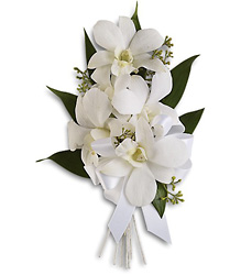 Graceful Orchids Corsage from Parkway Florist in Pittsburg PA