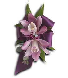 Exquisite Orchid Wristlet from Parkway Florist in Pittsburgh PA