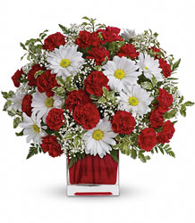 Red And White Delight in Pittsburgh from Parkway Florist in Pittsburg PA