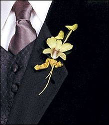Cat's-Eye Green Orchid Boutonniere from Parkway Florist in Pittsburgh PA