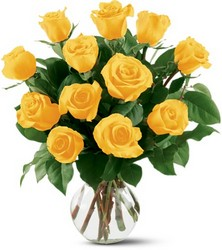 12 Yellow Roses from Parkway Florist in Pittsburg PA