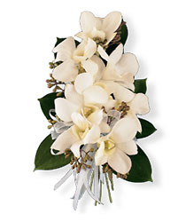 White Dendrobium Corsage from Parkway Florist in Pittsburgh PA