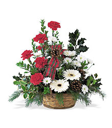 Winter Wonderland Basket from Parkway Florist in Pittsburgh PA